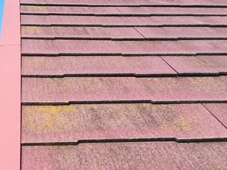 新宿区中井にて、築14年のお住まいの屋根と外壁塗装を行いました