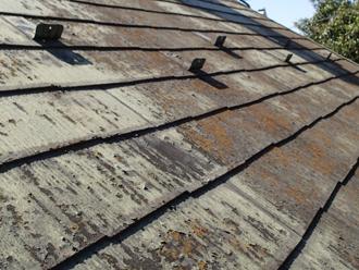 八街市泉台にて経年劣化で苔が発生していたお住まいの塗装を実施