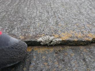 屋根の苔・カビ