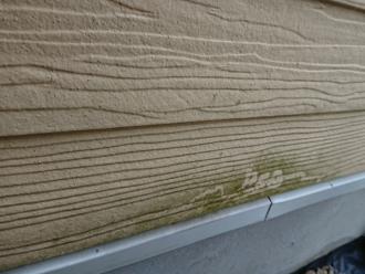 外壁には藻などの汚れが付着しています