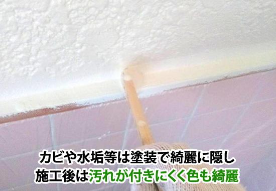 カビや水垢等は塗装で綺麗に隠し施工後は汚れが付きにくく色も綺麗
