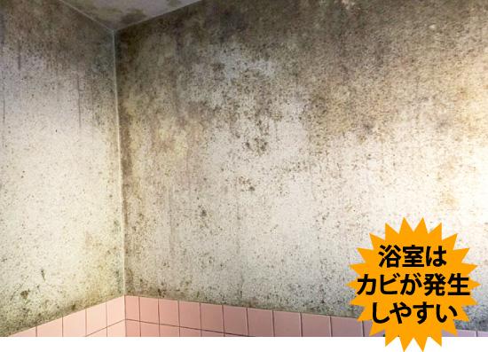 浴室はカビが発生しやすい