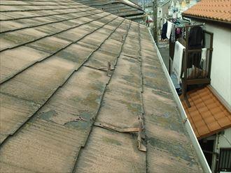 スレート屋根全体