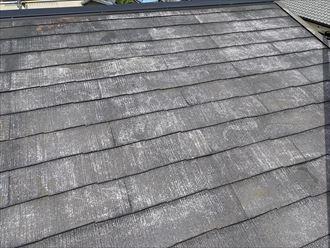 乾燥後の屋根