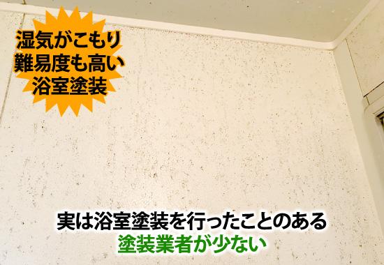 実は浴室塗装を行ったことのある塗装業者が少ない