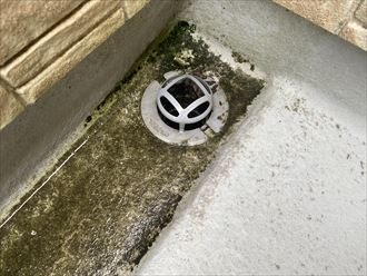 排水口の不具合