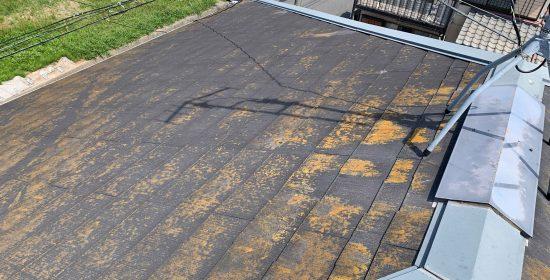 品川区南大井で劣化して苔とカビが見られる屋根と外壁の塗装のご相談
