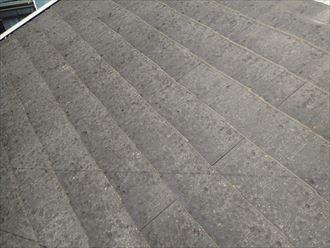 市原市 屋根の色あせ