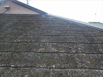 君津市外箕輪で苔や汚れが著しく堆積した屋根への塗装工事のご提案
