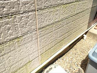 木更津市羽鳥野の外壁塗装調査、チョーキングや苔の発生