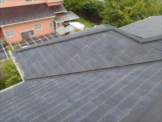 木更津市畑沢の屋根塗装調査、苔の広がりは屋根塗装時期のサインです