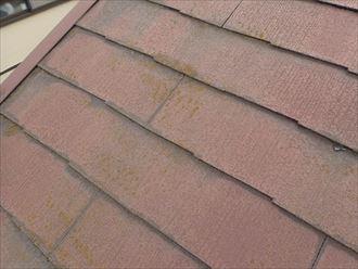 袖ケ浦市今井のスレートへの屋根塗装調査、色褪せや苔の発生