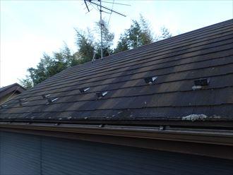 市原市潤井戸の築15年が経過した化粧スレートには屋根塗装工事が必要です