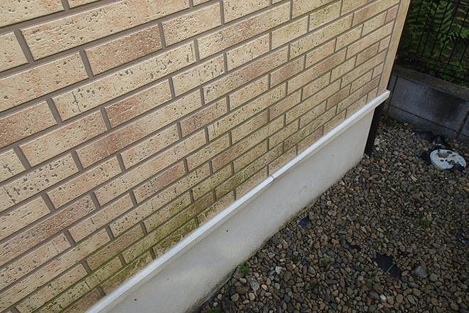 苔の付着した外壁