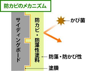 防カビのメカニズムの図