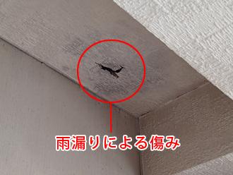 千葉県木更津市 屋内点検 雨漏りによる天井クロスの傷み