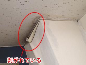 千葉県木更津市 屋内点検 天井付近のクロスが剥がれている