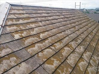 スレート屋根の塗装を検討中|横浜市泉区