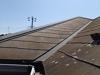 苔とカビが生えた屋根