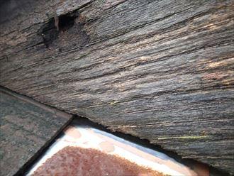 館山市 高対候な人工木のウッドデッキ工事始まりました
