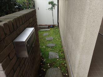 苔,庭,外壁,モルタル