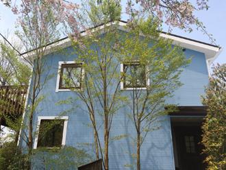 藤沢市 屋根塗装 外壁塗装 青 G69-80H 破風窓枠白 ケラバ サーモアイ4Fクールチョコ