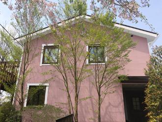 藤沢市 屋根塗装 外壁塗装_ピンク G02-80 破風窓枠白 サーモアイ4Fクールチョコ