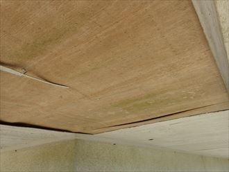 ナノコンポジットW防藻+で苔が発生しにくい外壁塗装施工!