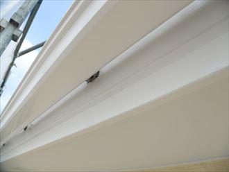 破風板,雨樋塗装
