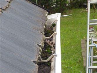 ォーム エイジング塗装(屋根、外壁塗装)