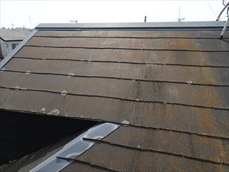 屋根材,苔,退色,塗装