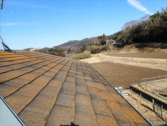 苔,屋根塗装