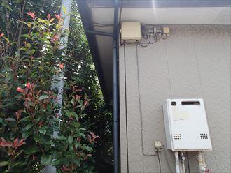 外壁,塗装,植栽